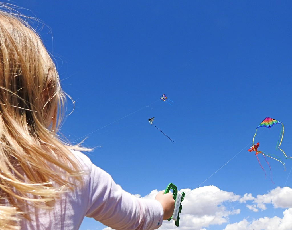 Children and Kites by janeandcharlie