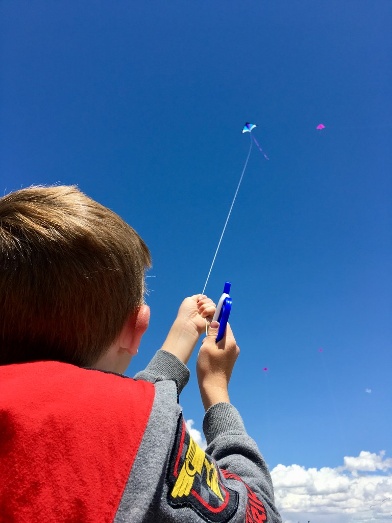 Let's Go Fly a Kite by arthur2sheds