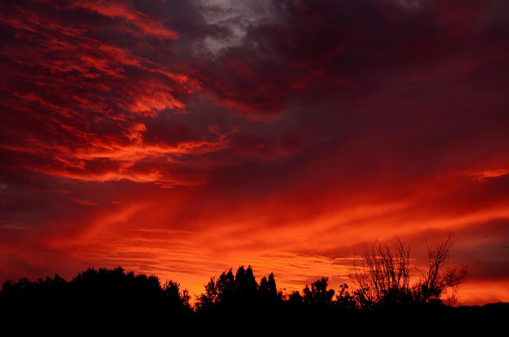 Burning Sky by salza