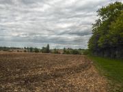 1st May 2019 - April/May farm view