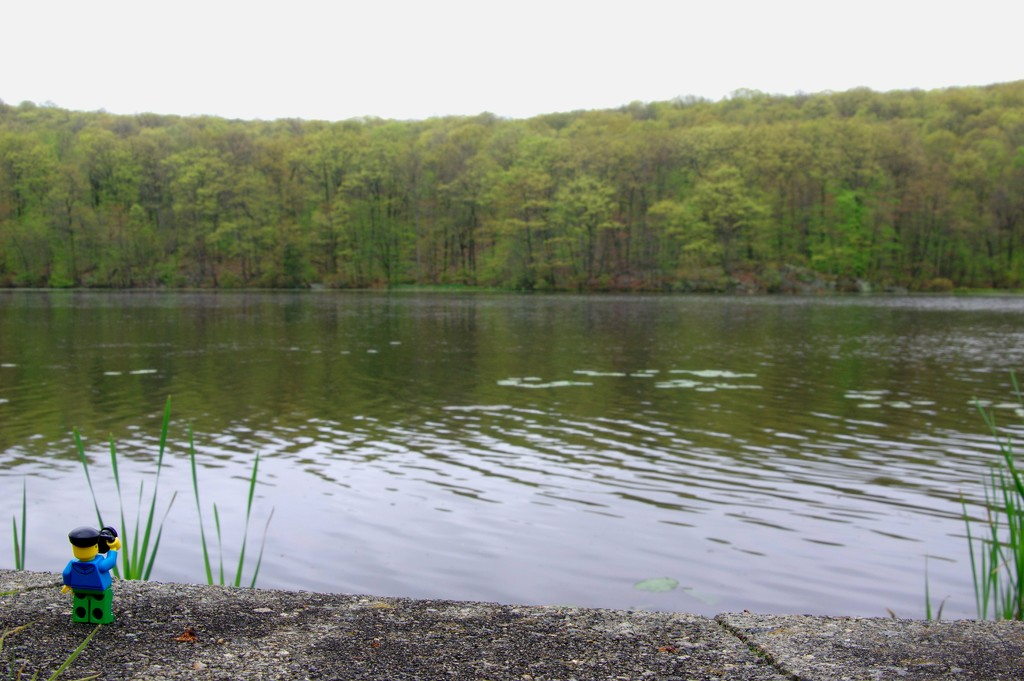 (Day 79) - Staying Upstate by cjphoto