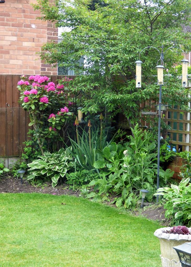 The spring garden  by beryl