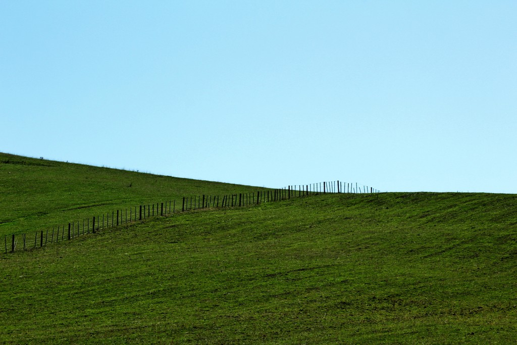 blue and green by wenbow