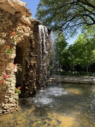 7th May 2019 - The Arboretum's Water Wall Grotto