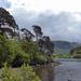 Shore of Derwentwater by cmp