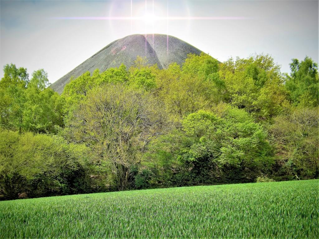 Mount Crushmore by ajisaac