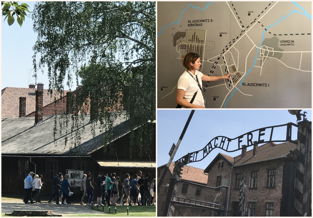 On the 9th we toured both Auschwitz and Birkenau Camps , by Dawn