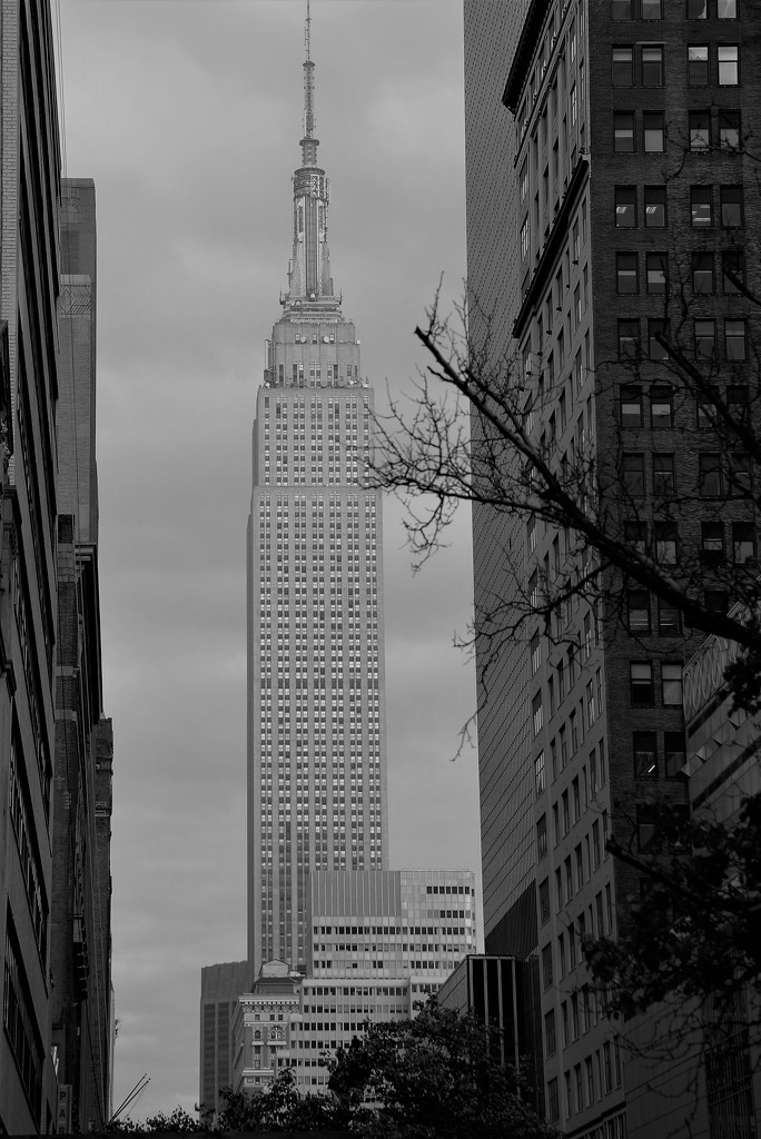 Empire State Building by chejja