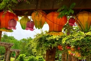 8th May 2019 - Half lanterns and half Fort Worth Japanese Gardens