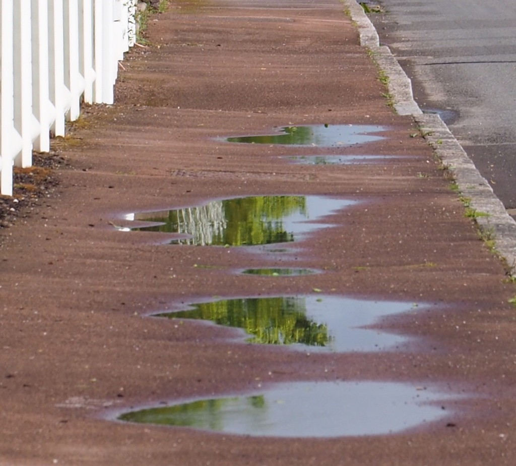 Puddle reflections...why not? by s4sayer