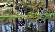 24th Apr 2019 - 24th April Yorks Himalayan gdn reflected walkers