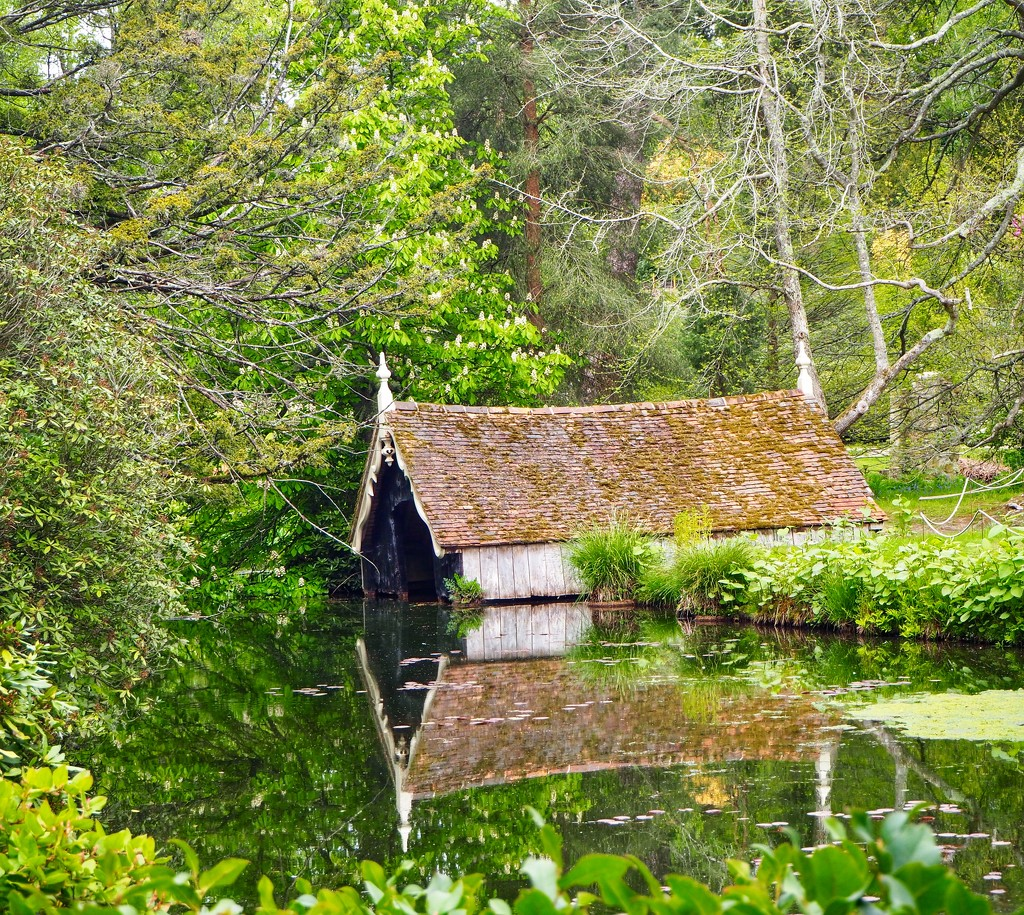 Boat House  by suesmith