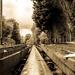 Tracks by peadar