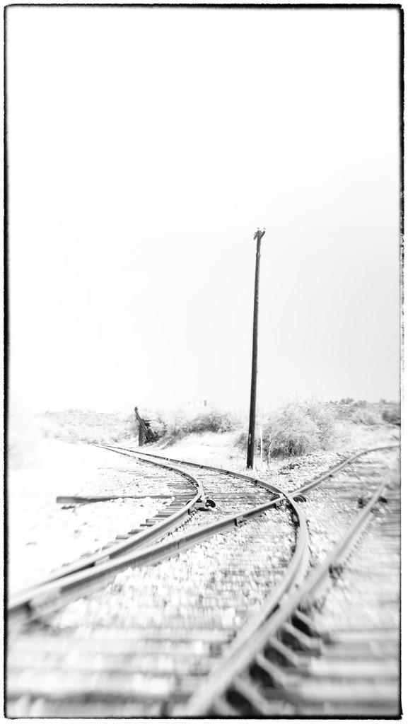 The Rail Not Taken by joysabin