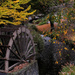 Autumn waterwheel