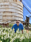 11th May 2019 - Jerry and the silo