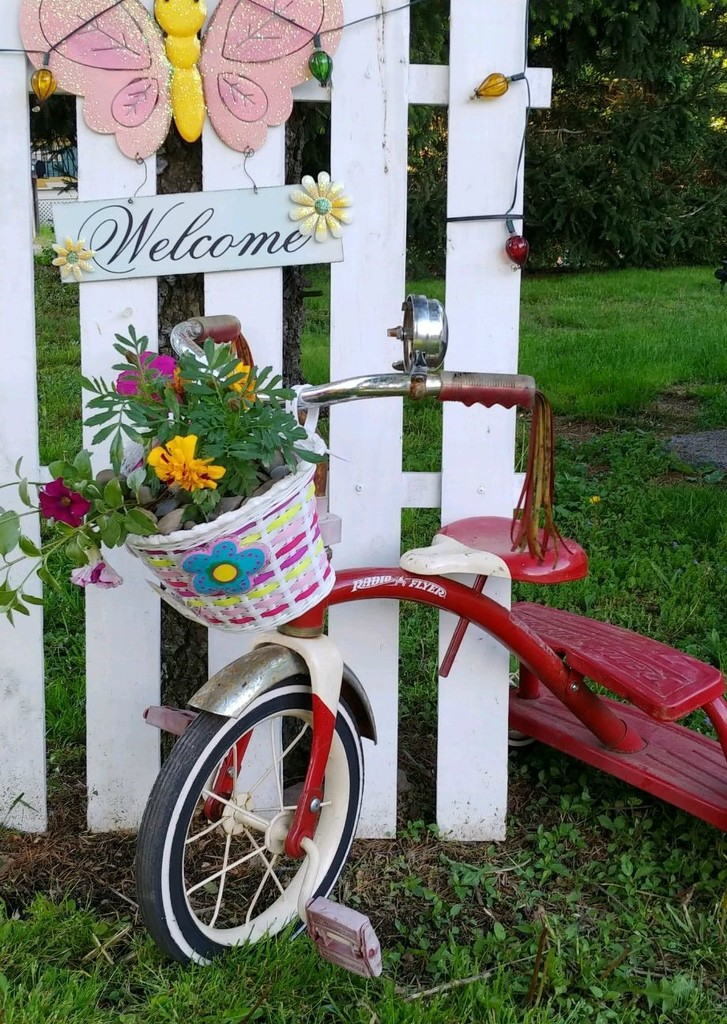 Repurposed Tricycle  by jo38