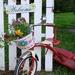 Repurposed Tricycle