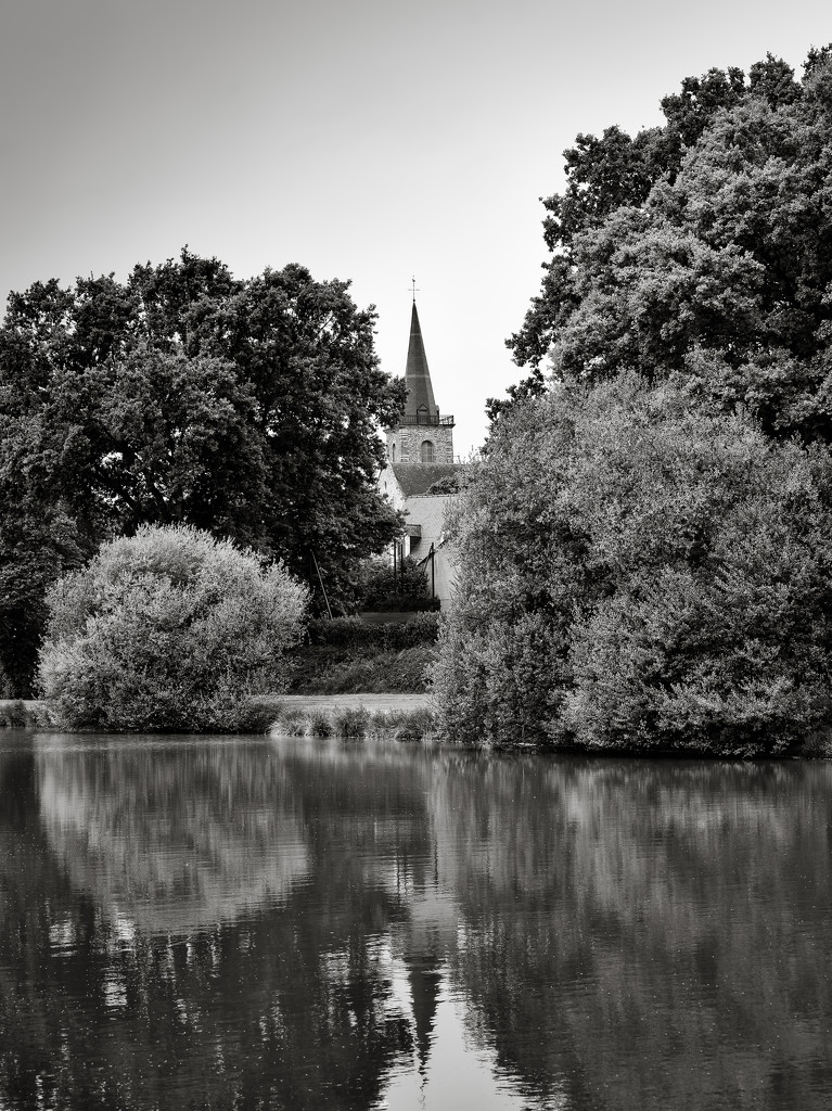 Glimpsed through the trees by vignouse