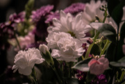 12th May 2019 - Mother's Day Bouquet