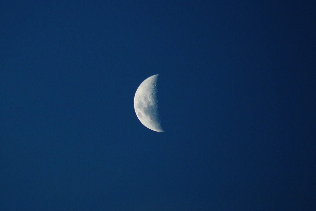blue moon by wenbow