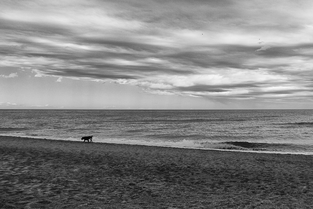 Sand, sea and clouds by laroque