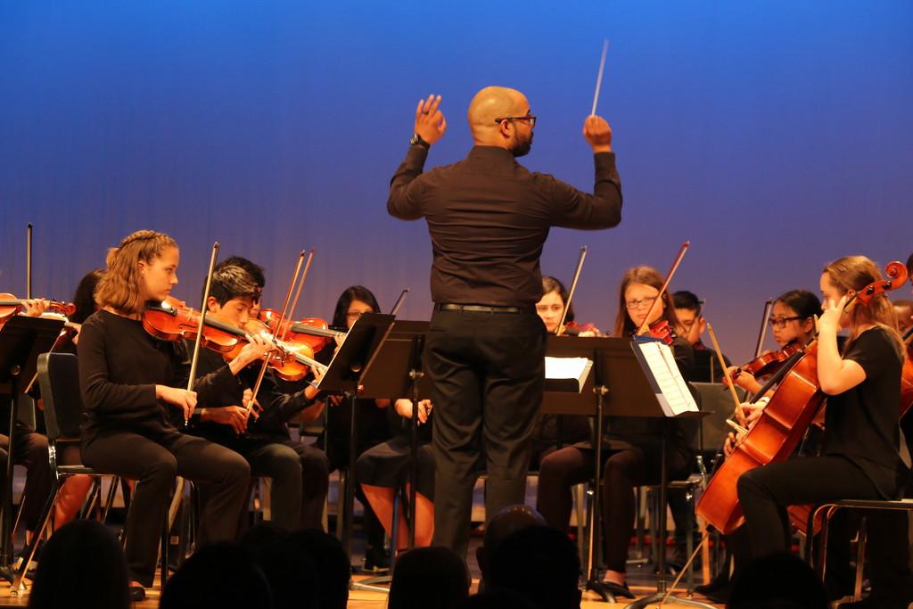 Concert by ingrid01