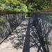 Treetop walk Kew Gardens