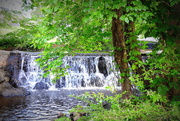 13th May 2019 - Park water
