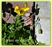 14th May 2019 - Me and my shadows