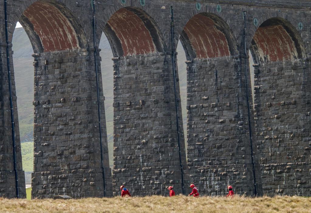 Ribblehead Viaduct by shepherdman