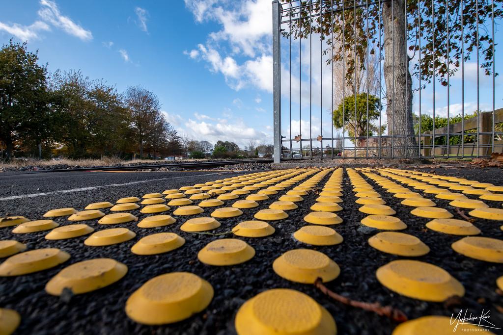 Yellow Dots by yorkshirekiwi