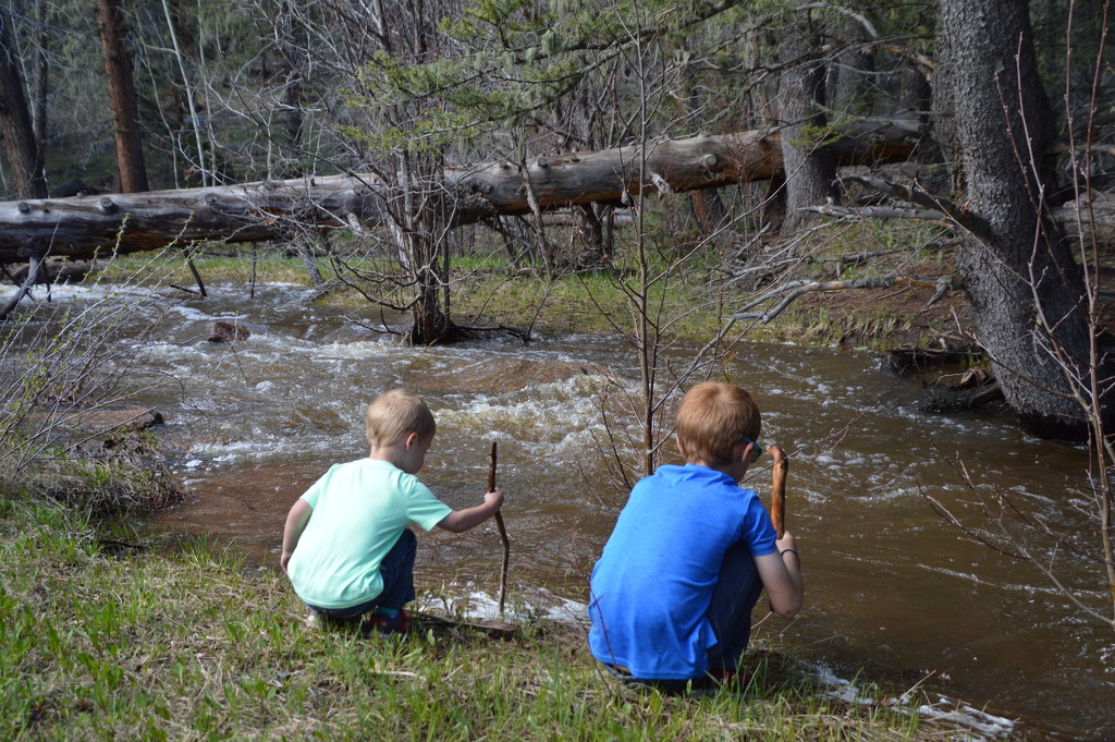 Boys, Sticks And Water. by bigdad
