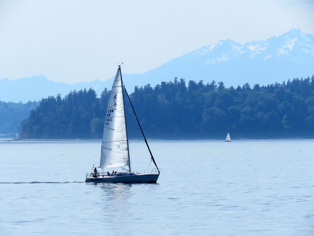 Smooth Sailing by seattlite