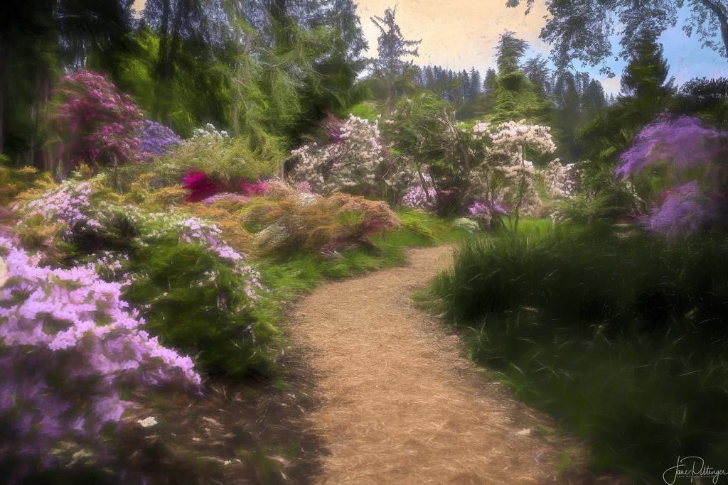 The Path Through Hinman Gardens-Impression by jgpittenger