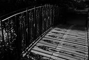 16th May 2019 - Bridge of shadows