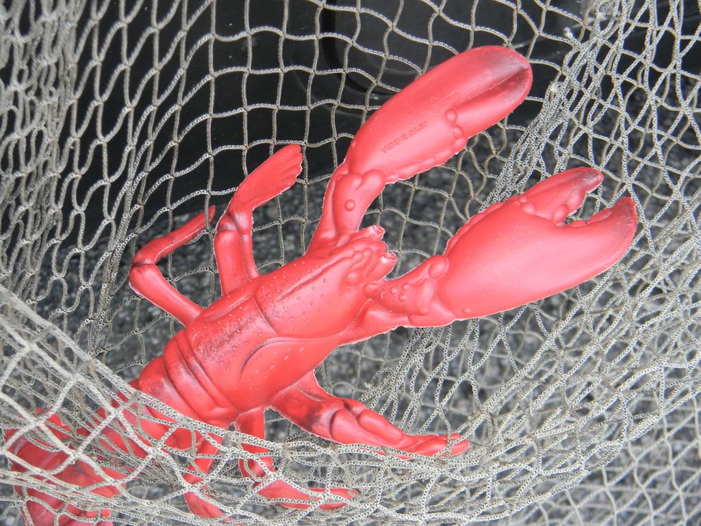 Fake Lobster by sfeldphotos
