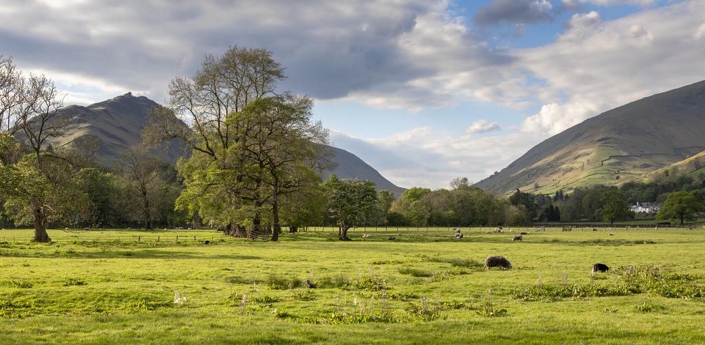 Grasmere Cumbria by shepherdmanswife