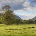 Grasmere Cumbria