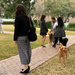Texas' First Lady & First Dogs [Filler]