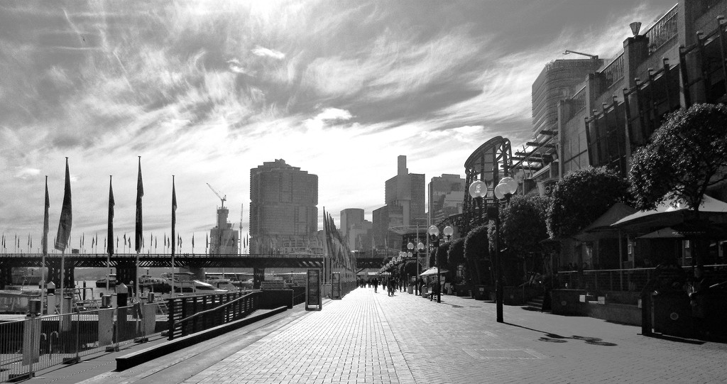 The Esplanade Darling Harbour. by robz