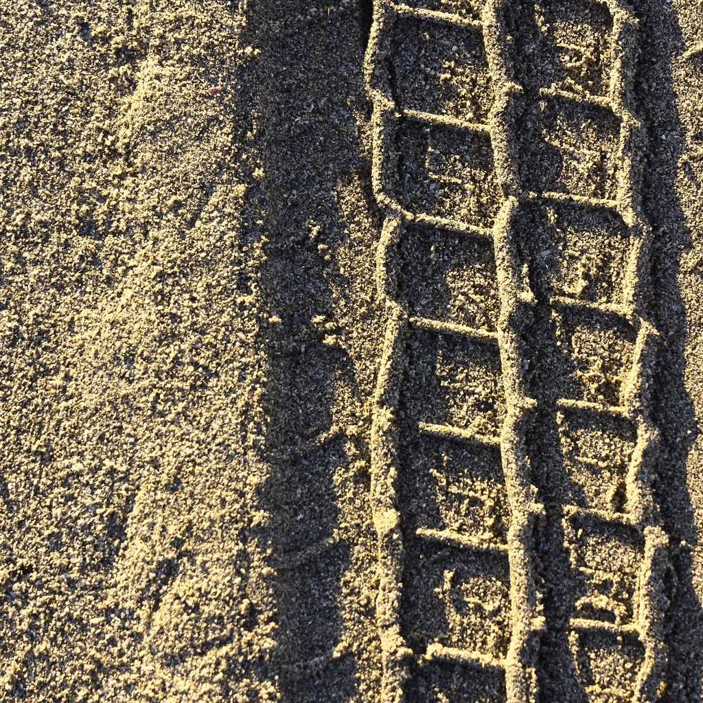 Tracks In The Sand..._DSC0946  by merrelyn