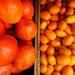 Orange half-and-half