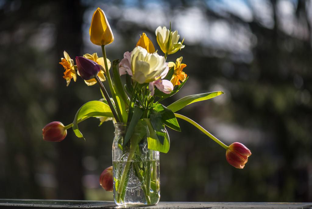 Bouquet by dianen