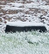 20th May 2019 - Snow on Basalt and Everything Else!