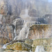 Mammoth Hot Springs by 365karly1