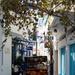 Skopelos delivery
