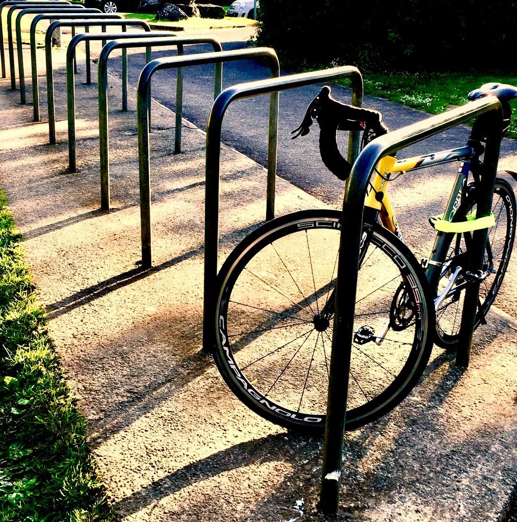 Bike racks by lilaclisa