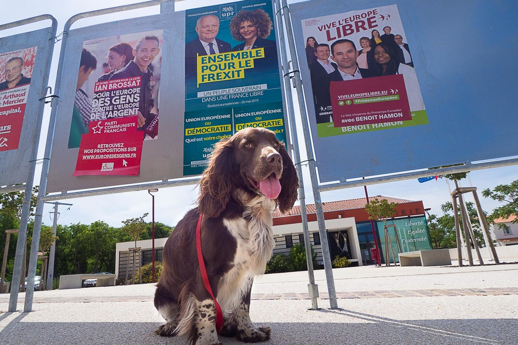 Together for Frexit ! by laroque