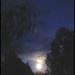 Moon setting..